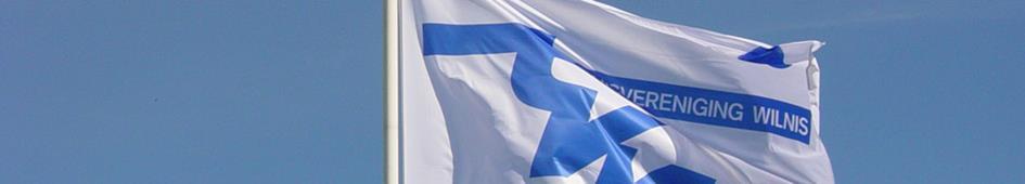 tvwilnis-vlag.jpg